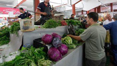 Photo of حوالي 70 بالمائة من التجار يعيدون فتح محلاتهم … والبقية في الانتظار بعد أيام