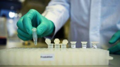 Photo of بإنتاج 200 ألف وحدة… الجزائر تشرع رسميا في إنتاج الكاشف السريع لفيروس كورونا في 15 دقيقة