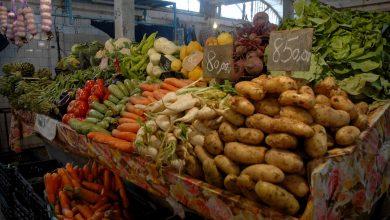 Photo of قصد الحد من المضاربة: «الديوان الوطني للخضر واللحوم يجند 200 نقطة بيع بأسعار معقولة»