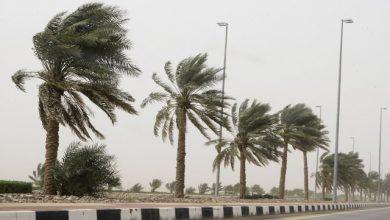 Photo of نشرية خاصة للأرصاد الجوية تحذر من هبوب رياح قوية على 17 ولاية