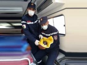 Photo of تيبازة… ولادة ناجحة داخل سيارة الحماية المدنية عشية عيد الفطر