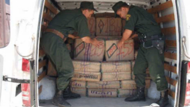 Photo of الجيش يوقف تجار مخدرات… حجز أزيد من 100 كلغ من الكيف بالنعامة وغليزان