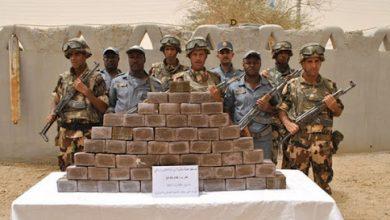 Photo of وزارة الدفاع… ضبط 3.22 طن من الكيف المعالج بتندوف