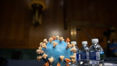 Photo of ينقلون اللقاح الروسي إلى السعودية للاختبار الأخير…!???