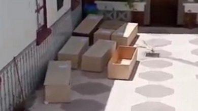 Photo of قسنطينة.. توقيف مروج فيديو يسيء للمركز الاستشفائي الجامعي