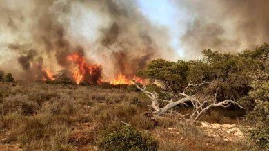 Photo of الطارف.. إخماد 10 حرائق كبيرة في أول أيام العيد