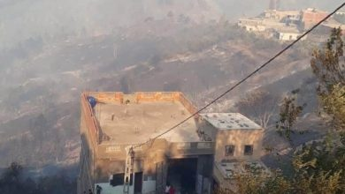 Photo of الحرائق تلحق أضرارا بـ 20 منزلا بقرى سطيف