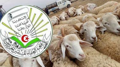 Photo of جمعية العلماء الجزائريين تنفي إصدار فتوى حول إلغاء الأضحية