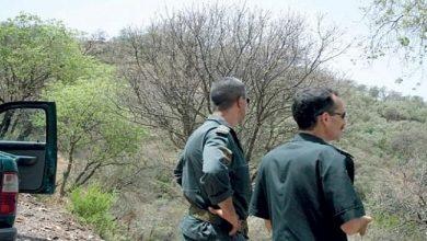 Photo of مجهولون يعتدون على أفراد من مقاطعة الغابات بوحمامة