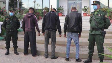 Photo of بناء على تحقيقات باشرتها… الدرك الوطني يوقف ثلاثة أشخاص بتيبازة يشبته ضلوعهم في حرائق الغابات الأخيرة