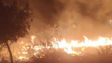 Photo of نشوب عدة حرائق في مدينة السعيدية المغربية ليلة أمس