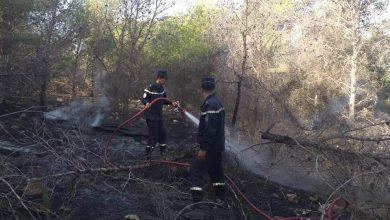 Photo of إندلاع حريق بغابة السبيعات بعين تموشنت