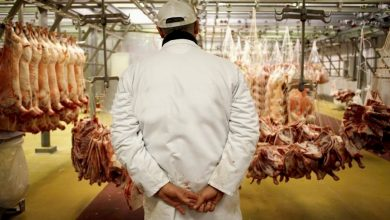 Photo of تجميد استيراد اللحوم الحمراء سيوفر على الجزائر أكثر من 200 مليون دولار سنويا