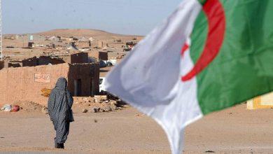 Photo of بعد مقال فرنسي مغلوط حول سيطرة البوليساريو على ولاية تندوف… الجزائر تشدد لهجتها