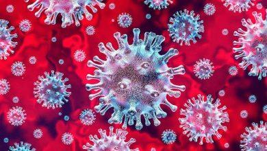 Photo of سببه اشتعال عجلات مطاطية مستعملة من الحجم الكبير… حريق داخل شركة للزفت في تيبازة