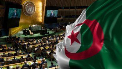 Photo of خلال الفترة 2024/2025… الاتحاد الإفريقي يرشح الجزائر لعضوية مجلس الأمن