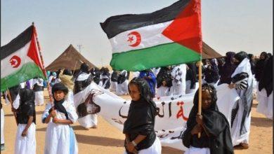 Photo of انتصار جديد للقضية الصحراوية…. زامبيا تغلق قنصليتها العامة في العيون المحتلة