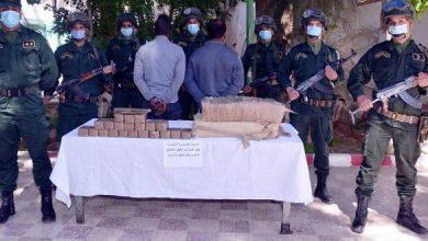 Photo of من بينهم جنسية مغربية.. توقيف 13 تاجر مخدرات وحجز 14 قناطير من الكيف المعالج