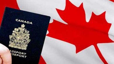 Photo of سفارة كندا بالجزائر تحذر من مواقع الهجرة المزيفة