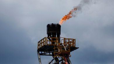 Photo of النفط يواصل الصعود بعد تقرير لوكالة الطاقة الدولية