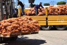 """Photo of تحسا للمنتوج الجديد… """"أونيلاف"""" يشرع في عملية جديدة لتفريغ البطاطا وضخها في السوق"""