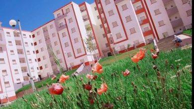 Photo of الصندوق الوطني للسكن : أسعار الكراء مرتفعة بالنسبة للمواطن الجزائري