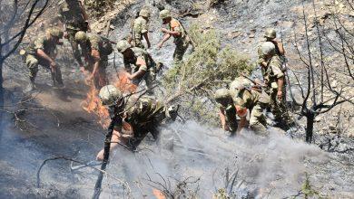 Photo of مفارز الجيش الوطني الشعبي تواصل تدخلها للسيطرة على حرائق الغابات بخنشلة