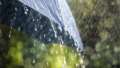 Photo of أمطار رعدية على هذه الولايات ظهر اليوم