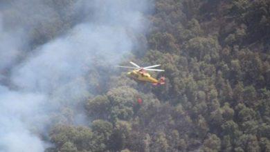 """Photo of عين الدفلى: تواصل عمليات إخماد حريق غابة """"العناب"""" ببلدية العامرة"""