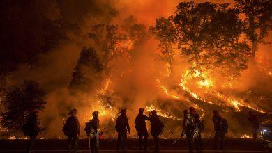 Photo of الحرائق الأخيرة إلتهمت أزيد من 89 ألف هكتار عبر 35 ولاية