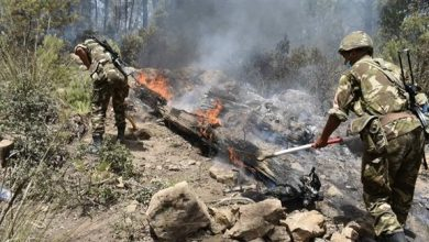 Photo of استشهاد 25 عسكريا إثر حرائق غابات تيزي وزو وبجاية