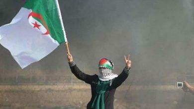 Photo of فلسطينيو غزة يقيمون صلاة الغائب على أرواح شهداء الحرائق في الجزائر