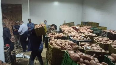 Photo of الشلف: حجز ألف قنطار من البطاطا