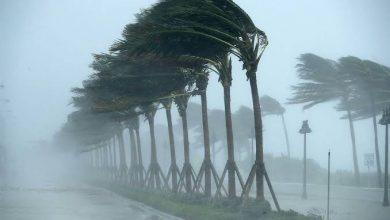 Photo of مصالح الأرصاد الجوية تحذر من رياح قوية ستضرب سواحل أرزيو