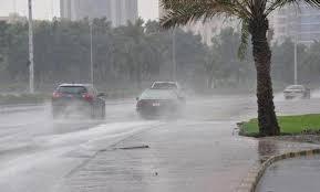 Photo of أمطار رعدية تصل لـ 25 ملم بهذه الولايات